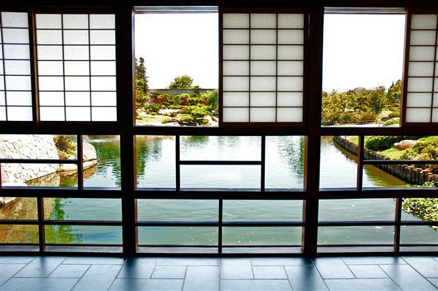 Rice Paper Windows