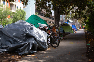 LA's Annual Homeless Count (Or Undercount?) Is Underway