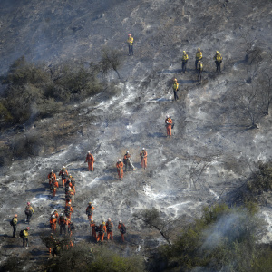 Getty Fire Was 'Act Of God' Caused By Tree Branch Hitting Power Lines, Authorities Say