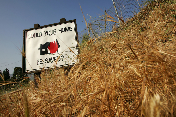 You're Fertilizing Invasive Grasses With Your Car, Making Wildfires Worse