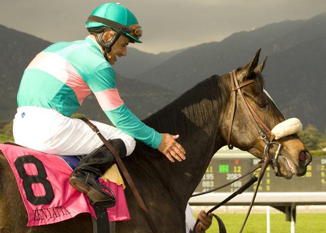 Santa Anita Racing Returns Horses And Statues And Food