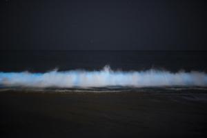 It's Back! Bioluminescent Algae Glows Again Off Southern California's Coast