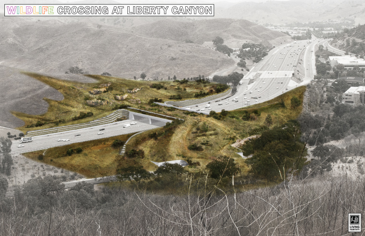 Wildlife Crossing Update: A Look At Plans For The Massive Bridge To Span 101 Freeway