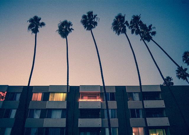 palmtrees_apts_640.jpg