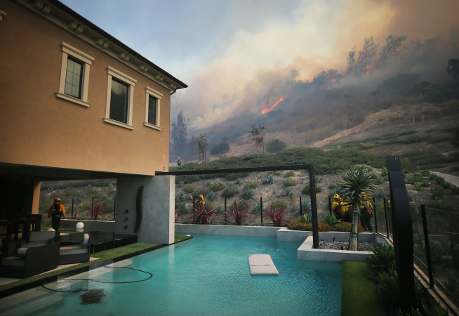 A Totally Bananas Idea? Planting Tropical Fruit Trees To Help Fight California Wildfires