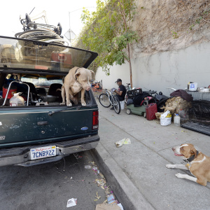 LA County Wants To Keep Homeless People And Their Pets Together