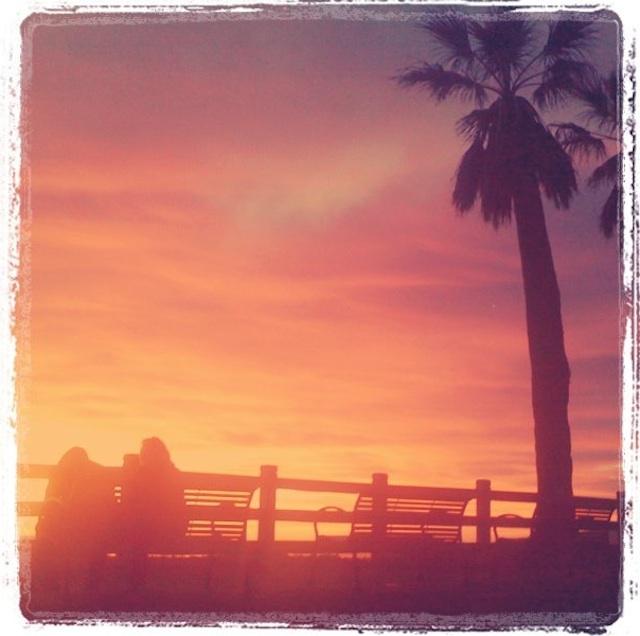 tropical-sunset.jpg