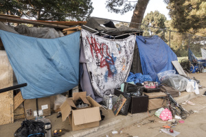 Where Unhoused People Saw Freedom, Their Venice Neighbors Saw A 'War Zone'