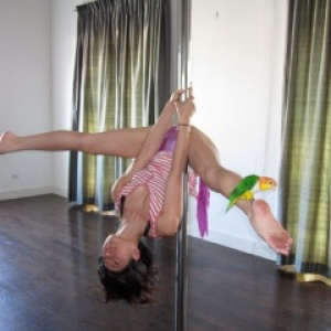 Past the Pole: The New Movement of Art and Dance at Movement Studio LA