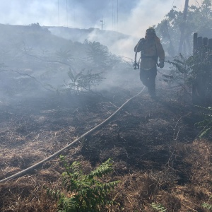 Small Brush Fire Breaks Out In El Sereno