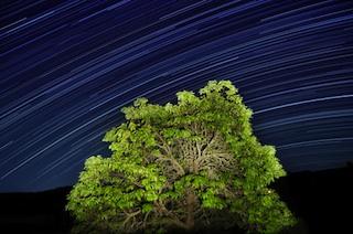 meteor-shower-320.jpg