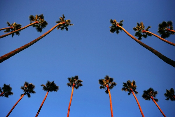 A Southern California Accent? As If!: LAist