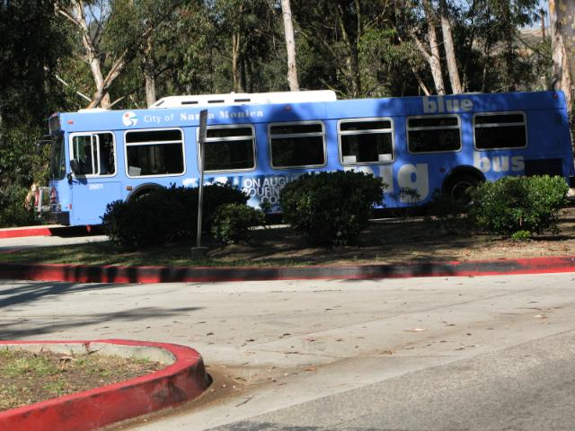 yep, SM Blue Bus comes right into the park