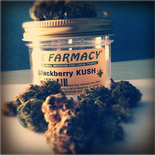 blackberry-kush.jpg